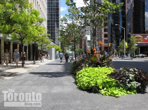 New Bloor Street sidewalks trees and flowers near Church Street