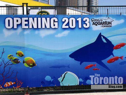 Ripley's Aquarium Toronto promotional hoarding