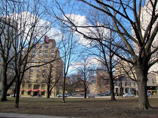 Allan Gardens Toronto west park area