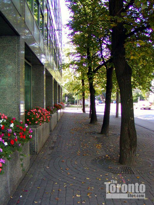 Charles Street East at Jarvis Street Toronto